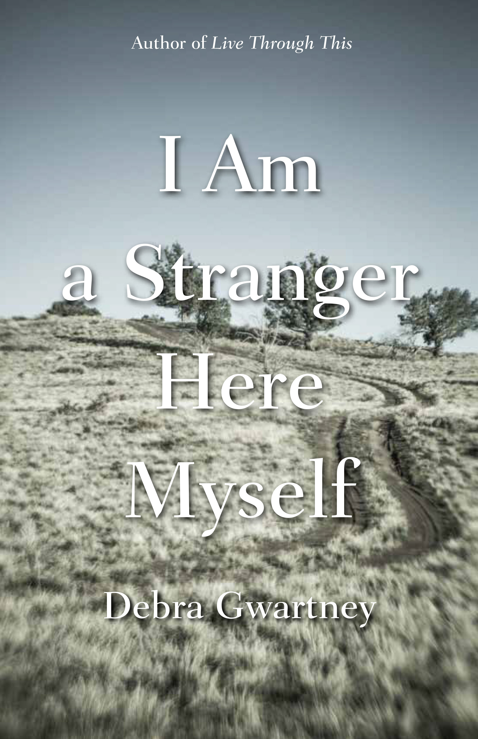 I Am a Stranger Here Myself